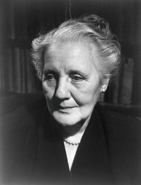 an overview of the works of melanie klein Examine the nature creativity, using theories of melanie klein in this essay exploring the nature of creativity, i draw on an essay of austrian born british psychoanalyst melanie klein (1882-1960), infantile anxiety situations reflected in a work of art and in the creative impulse (1929) while.